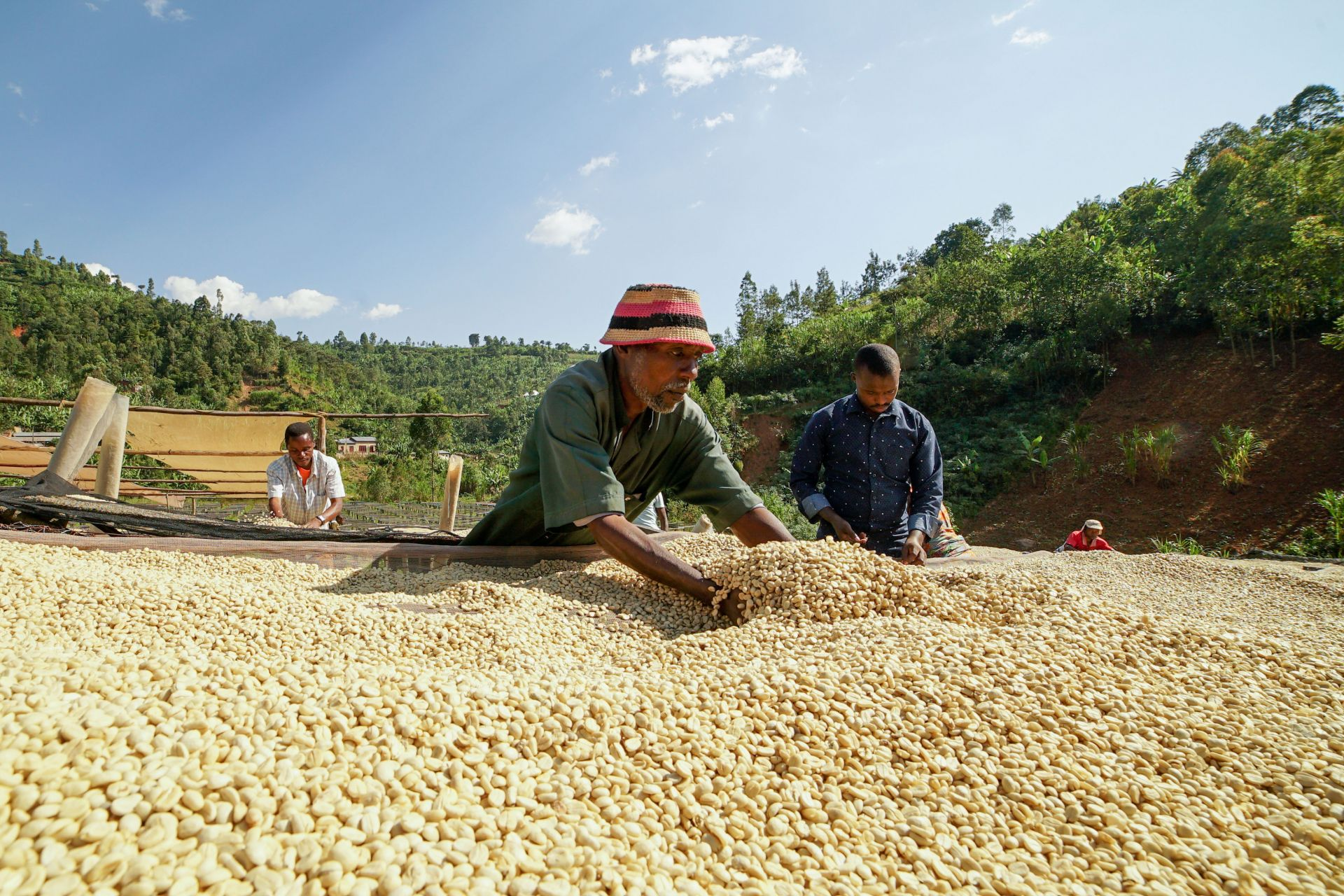 Het Selecta Coffee Fund